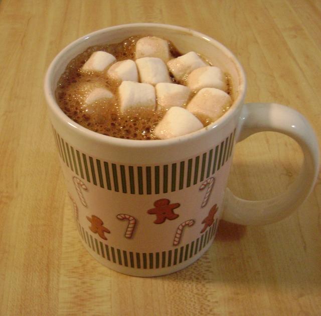 Alton Brown's hot cocoa mix
